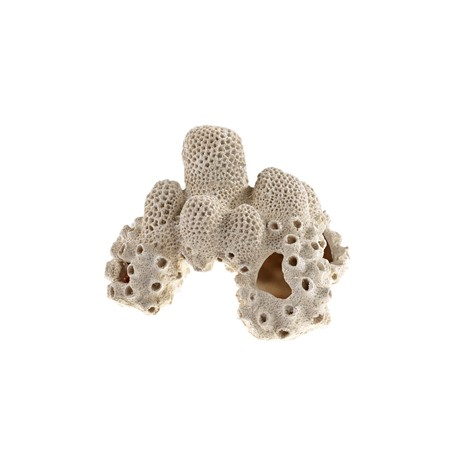 Classic Coral Rock 195Mm