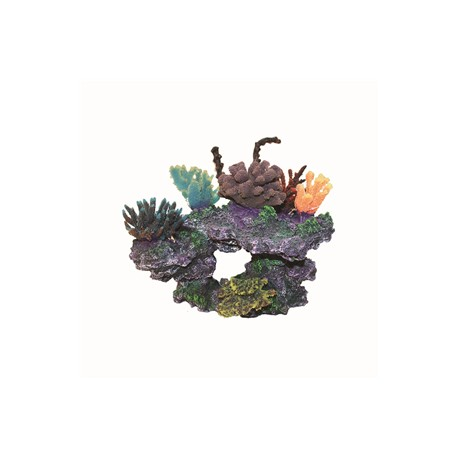 Hugo Coral Sculpture